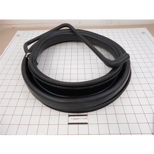 ASSEMBLY, DOOR SEAL & HOSE